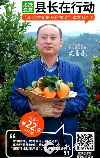 """贵州罗甸:电商助销有""""橙""""果,官方代言加把""""火"""""""